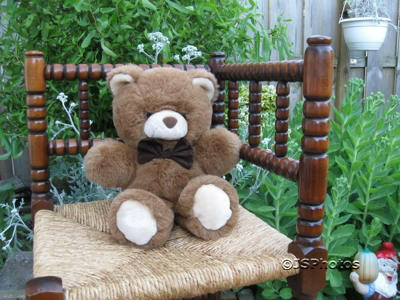 Dutch Holland Bart Smit marrone Teddy Bear