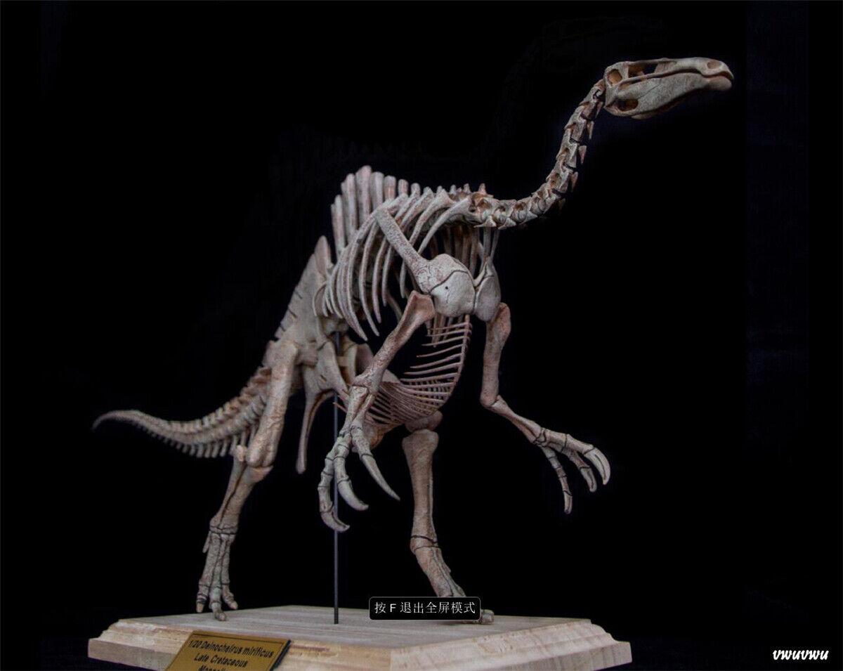1 20 Deinochelius Skeleton modello Dinosaur Animal Decor Dinos Collector Gift