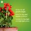 thumbnail 10 - GE Lighting LED Grow Light for Indoor Plants BR30 Bulb 9W Full Red Spectrum SALE