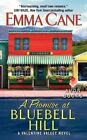 A Promise at Bluebell Hill: A Valentine Valley Novel by Emma Cane (Paperback, 2014)