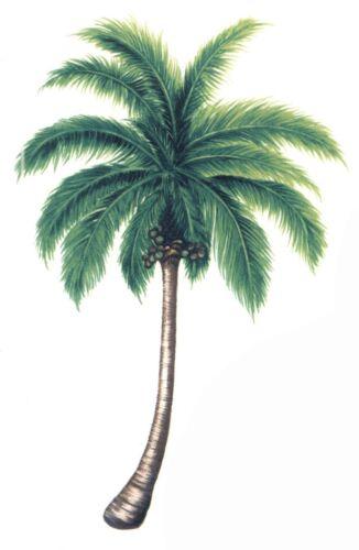 "Palm Tree 4 pcs 4/"" X 2-1//2/"" Waterslide Ceramic Decals Ox"