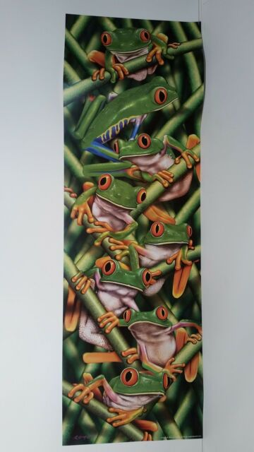 RED-EYED TREE FROGS POSTER ANIMALS #PH0023  RW9 R FREE SHIPPING