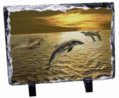AF-D4SL Gold Sea Sunset Dolphins Photo Slate Christmas Gift Ornament