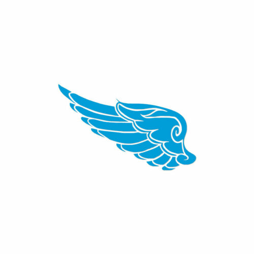 ebn3086 Vinyl Decal Sticker Multiple Colors /& Sizes Angel Bird Wing