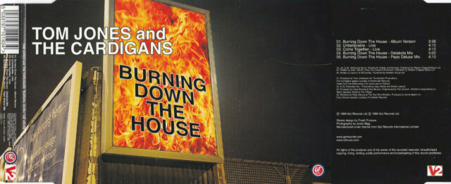 Tom Jones & The Cardigans - Burning Down The House (5 Track Maxi CD)
