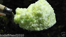 Water Soluble NPK fertilizer (19-19-19) All purpose / Idle for Hydroponic (400g)