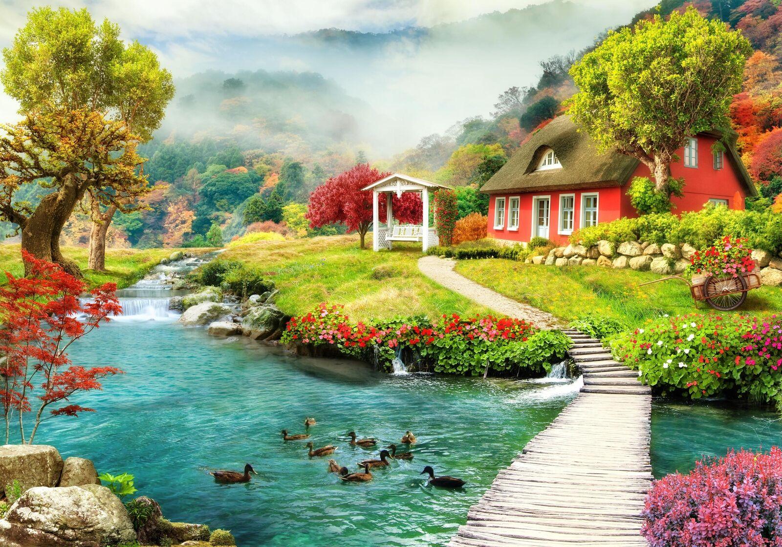 Fototapete Landhaus Bach Wiese Enten Pfad Weg Fluss Nebel trüb Blumen Pflanzen