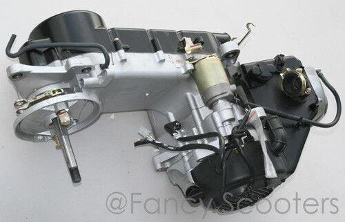 OEM PISTON /& RINGS HEAD GASKET SET YERF DOG SPIDERBOX GX150 150CC HOWHIT GO KART
