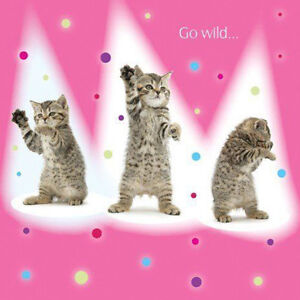 Image Is Loading Kittens Birthday Card Go Wild Dancing Kitten Cute