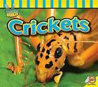 Crickets by Professor John Willis (Hardback, 2016)