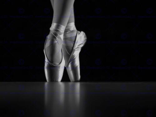 PHOTO DANCING DANCER BALLERINA BALLET SHOES 12 X 16 INCH ART PRINT POSTER HP2488