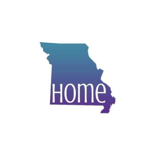 Vinyl Decal Sticker ebn3827 Multiple Patterns /& Sizes Missouri Home State