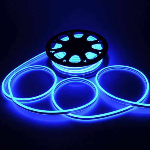 Details about  /220V Blue LED Flex Neon Rope Light Xmas Party Bar Garden DIY Sign Decor Outdoor