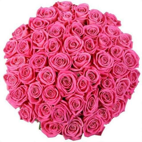 Pink Roses Bouquet Fresh Flowers Flowers Delivery Valentines Flowers