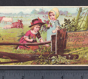 Dr-Kilmer-Meadow-Plant-Electric-Cancer-Cure-Cow-Farm-Flower-Victorian-Trade-Card