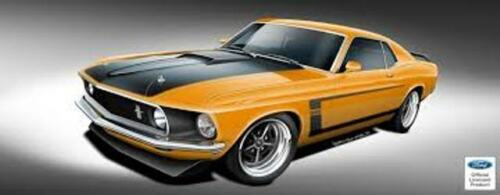 Ford Mustang BOSS 302 Special Stripes 1//18th Scale Waterslide Decals
