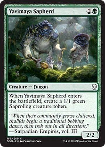 MTG x4 Yavimaya Sapherd Dominaria Common Green NM//M Magic the Gathering