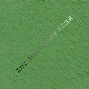 5-Grass-Green-shamrock-Mulberry-Paper-handmade-Thick-cards-scrapbook