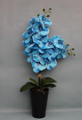 HANDMADE ARTIFICIAL SILK BLUE PHALAENOPSIS ORCHID IN BLACK CERAMIC PLANT POT