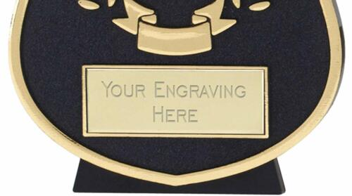 Emblems-Gifts Curve Gold You Won Who Cares Plaque Trophy With Free Engraving