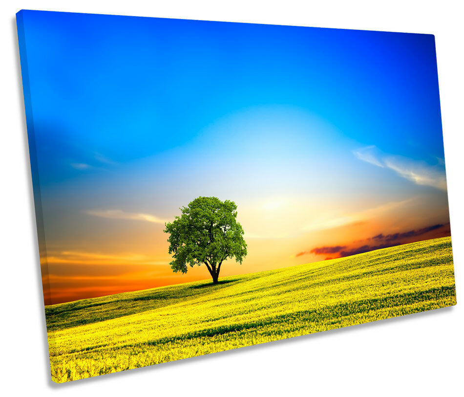 Landscape Countryside Sunset Bild SINGLE CANVAS Wand Kunst Drucken