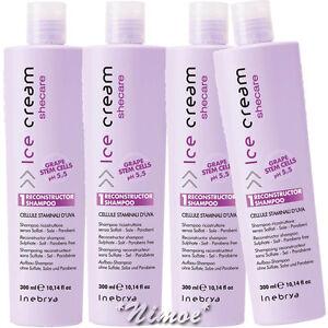 SheCare-Reconstructor-Shampoo-4-x-300ml-Damaged-Hair-Ice-Cream-Inebrya-She-Care