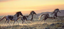 EARLY MORNING RUN Nancy Glazier  Signed & Numbered w/coa Horse Art