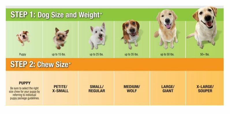 Grandi Quantitativi Sano Edibles per Cani Nylabone Digeribile Roast Manzo Manzo Manzo 4ae477