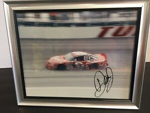 Dale-Earnhardt-Jr-Hand-Signed-8x10-Color-Photo-Autographed-With-COA-Budweiser