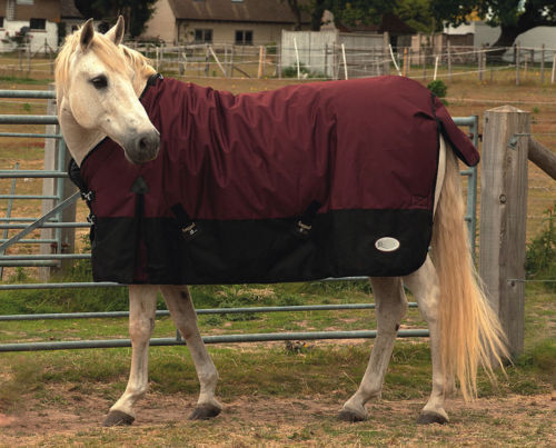 Rhinegold arizona horse 100g medium-lightweight horse arizona turnout outdoor rug 2022c5