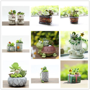 Flowerpot-Resin-Flower-Pot-Planter-Garden-Succulent-Plant-Home-Decor-11-Types