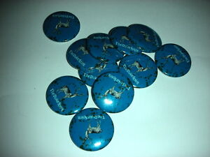 The-Duke-Spirit-10-Badges-NEW