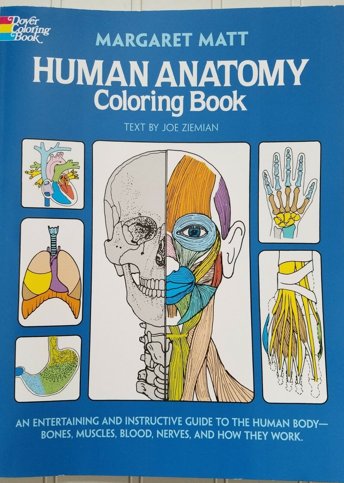 Human Anatomy Coloring Book (Dover Science Books) by Margaret Matt 3