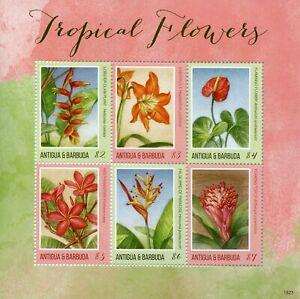 Sportif Antigua & Barbuda 2018 Neuf Sans Charnière Fleurs Tropicales Frangipani 6 V M/s Nature Timbres