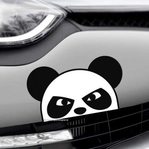 PEEKING ANGRY PANDA Peeper Funny Car,Window,Bumper JDM Vinyl Decal Sticker