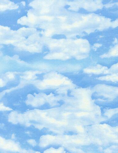 Paysage art Quilters tissu *** estivales jour ciel *** C 4954 *** 1//2 Mètres