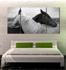 """Arabian Horses GIANT WALL POSTER 24""""x48"""" 3 PIECES ART PRINT 200al"""