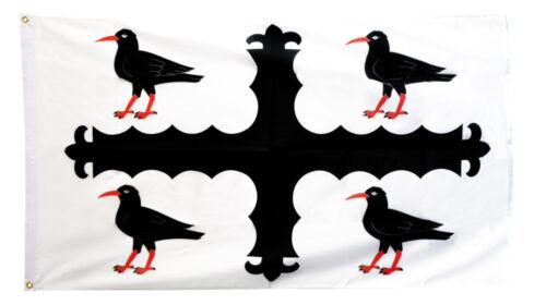 Wales Welsh Sir y Fflint Birds Flint Choughs Flintshire Flag 5 x 3 FT