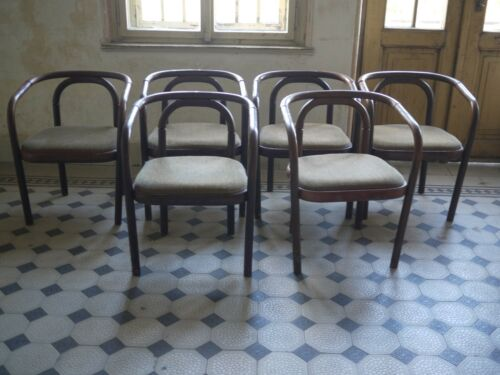 6 Elegant dinning chairs style of Otto Wagner Ton Thonet