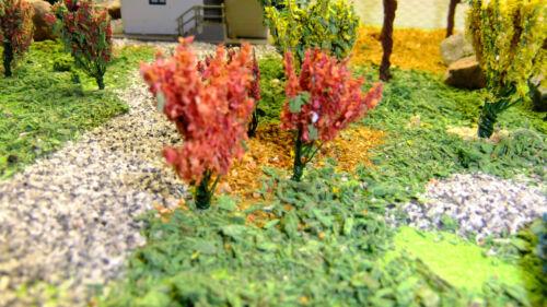 25 rote Blütensträucher als Solitär oder Hecke 2 cm ein Blickfang Rosen rot