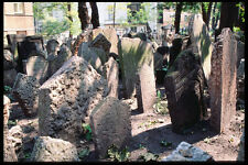 248096 Old Jewish Cemetery 15th Century To 1787 A4 Photo Print