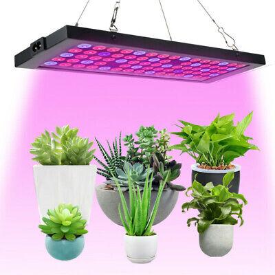 2000 W DEL Grow Light Hydro spectre complet légumes produits Fleur Intérieur Plante Lampe Panel