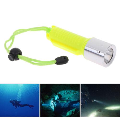 50000LM Unterwasser 50M T6 LED Tauchtaschenlampe Lampe WasserdichtesR.PF