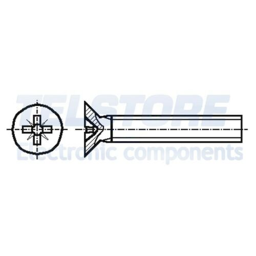 100pcs  Vite M2x6 Testa cilindrica Incisione Pozidriv acciaio zinco