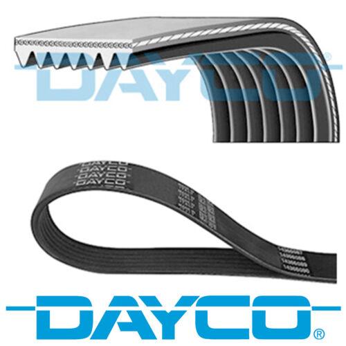 DAYCO v-Côtelé Ceinture 7 côtes auxiliaire 2265 mm ventilateur alternateur courroie 7PK2265