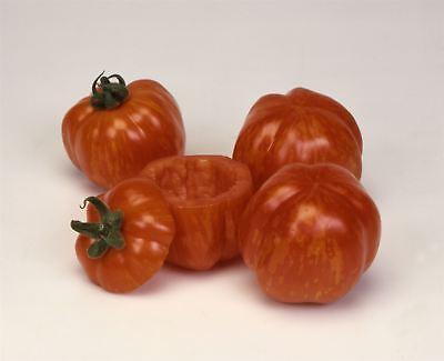 Aggressivo Verdura-pomodoro-a Righe Stuffer - 125 Semi-