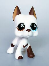 Littlest Pet Shop LPS Toys Figure Great Dane Dog Collection Rare Girl's Gift