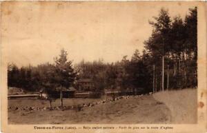 CPA-Usson-en-Forez-Belle-station-estivale-663908