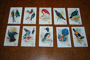 Rare 1896 Victorian Arm & Hammer Brand Soda Beautiful Birds Full Set 60 Card's