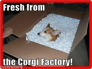 Funny Golden Retriever Dog Pissing  Refrigerator Tool  Box  Magnet
